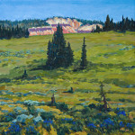 Chessman Meadows 12 X 12 $1300